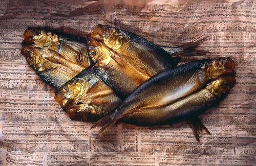Basement Fish